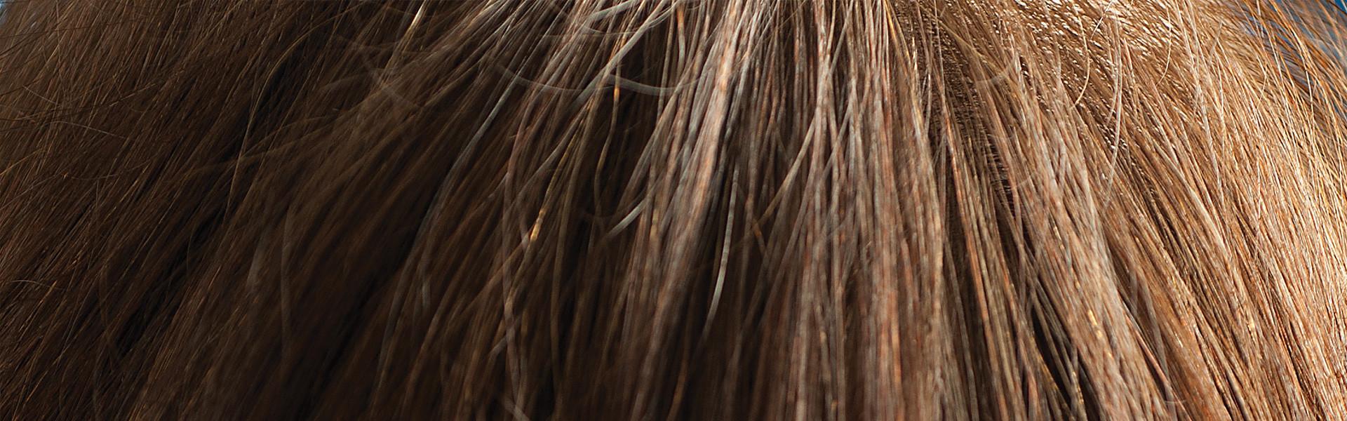 Ett brunt hårsvall