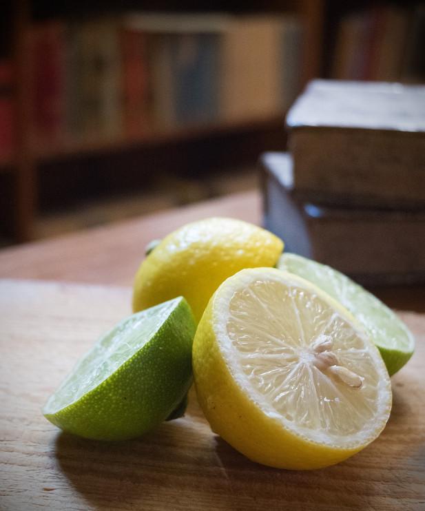 Citrusfrukter. Foto: Karolina Kristensson, Nordiska museet