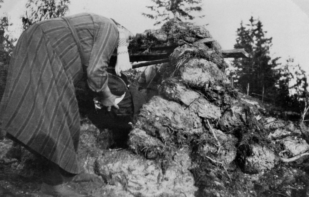 Jorddragning i Arnäs socken i Ångermanland 1933. Foto: Nordiska museet.