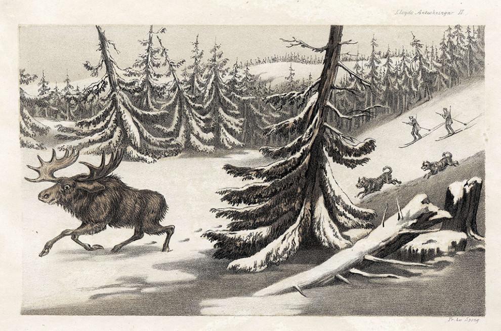 """Ur L. Lloyd """"Anteckningar ur ett tjuguårigt vistande i Skandinavien"""", 1855"""