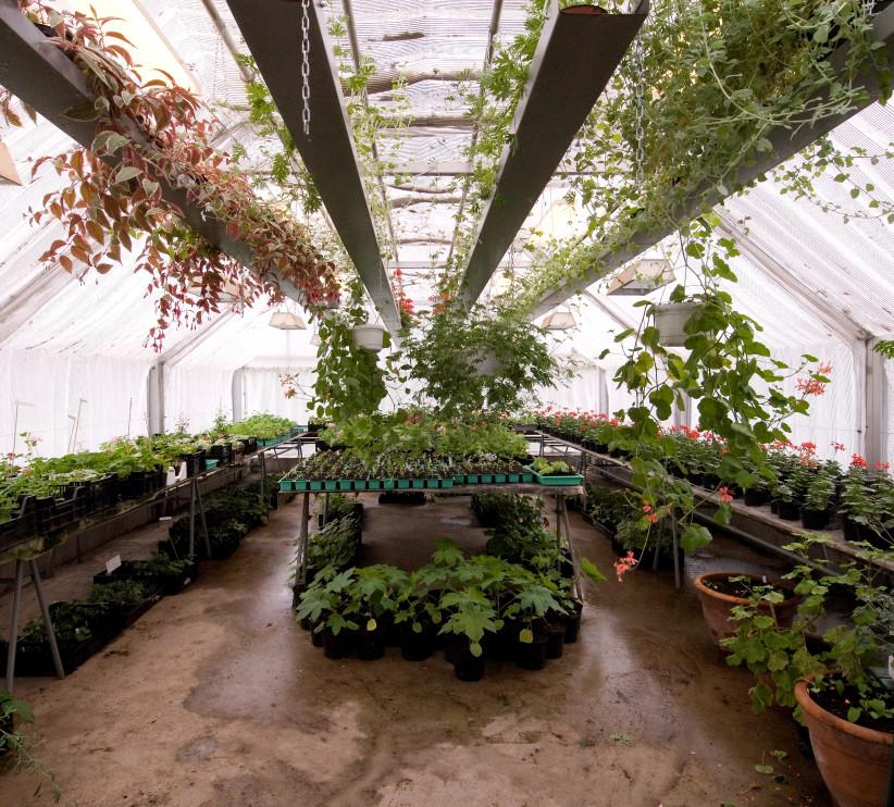Modernt växthus på Julita gård