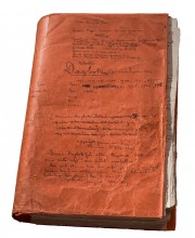 Ockulta dagboken