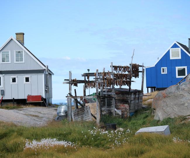Hus med fisk på tork utanför, Grönland. Foto: Nordiska museet