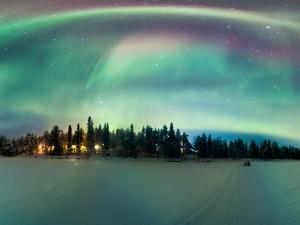Foto: nukleerkedi/iStockphoto