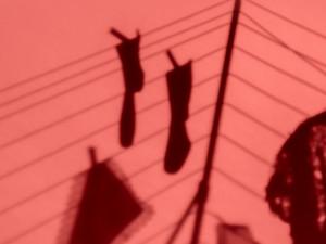Foto: Karolina Kristensson, Nordiska museet. Form: Hummingbirds.